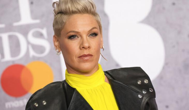 Pink Tells Ellen She'll No Longer Post Pictures of Her Kids on Social Media